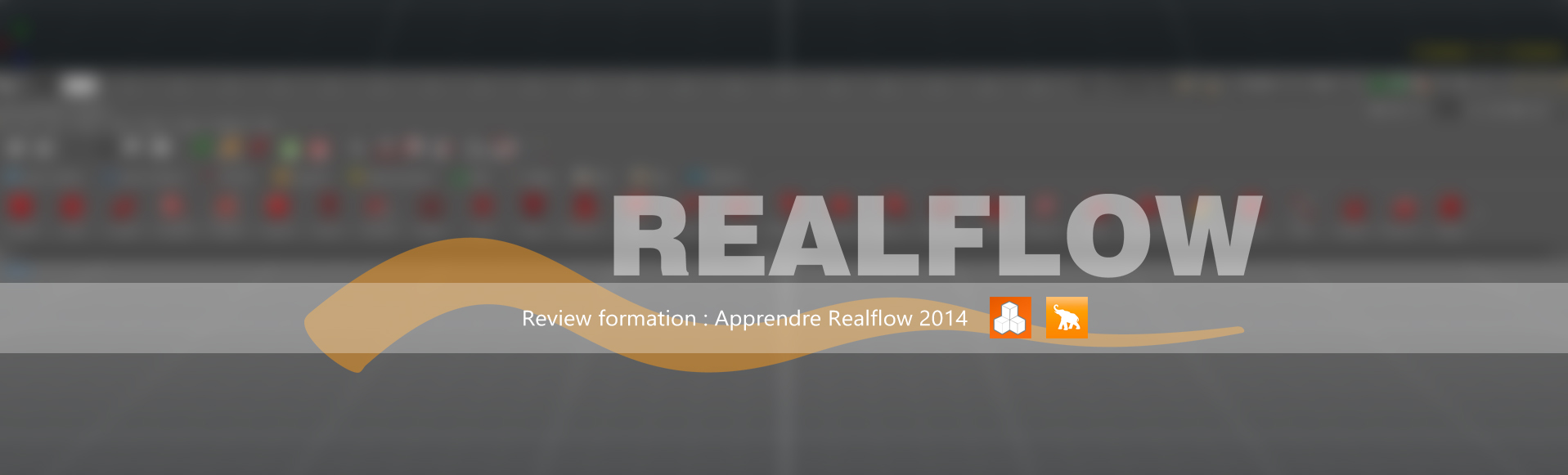Review formation Elephorm : Realflow 2014